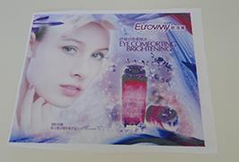 Flaggduk banderoll tryckt av 1,6 m (5 fot) ekolösningsmedelsskrivare WER-ES160 4