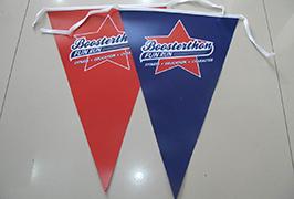 Flaggduk banderoll tryckt av 1,8 m (6 fot) ekolösningsmedelsskrivare WER-ES1801 2
