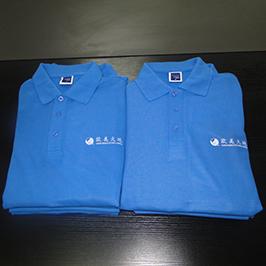 Pikétröja skräddarsydd tryckprov av A3 t-shirtskrivare WER-E2000T